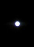 100527_1957~02.jpg