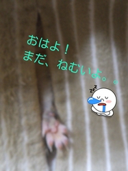 LINEcamera_share_2013-01-29-07-34-05.jpg